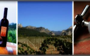 Thumbnail for Alicante Wines