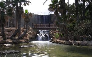 Thumbnail for Check out the El Palmeral Park in Alicante