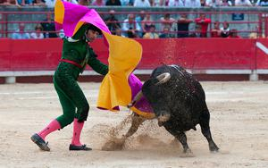 Thumbnail for Know all about Bullfighting in Alicante