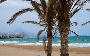 Thumbnail for Exciting Things to do in Alicante with Kids